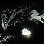 『乱歩・白昼夢』写し絵写真2
